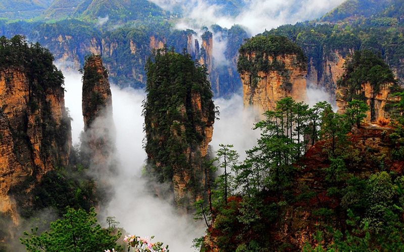 What attractions in Zhangjiajie worth to focus on?
