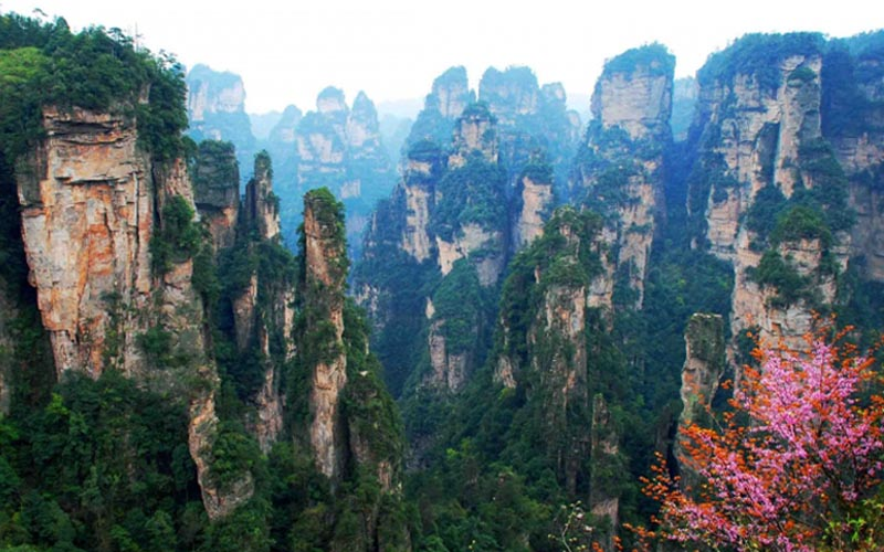 4-Day Zhangjiajie National Forest Park and Tianmen Mountain Tour