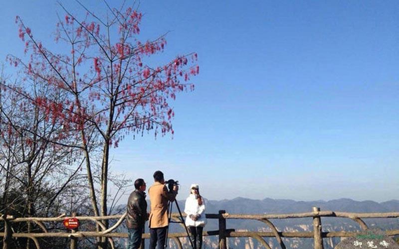 TVS-2 Propagate Zhangjiajie Winter Tourism