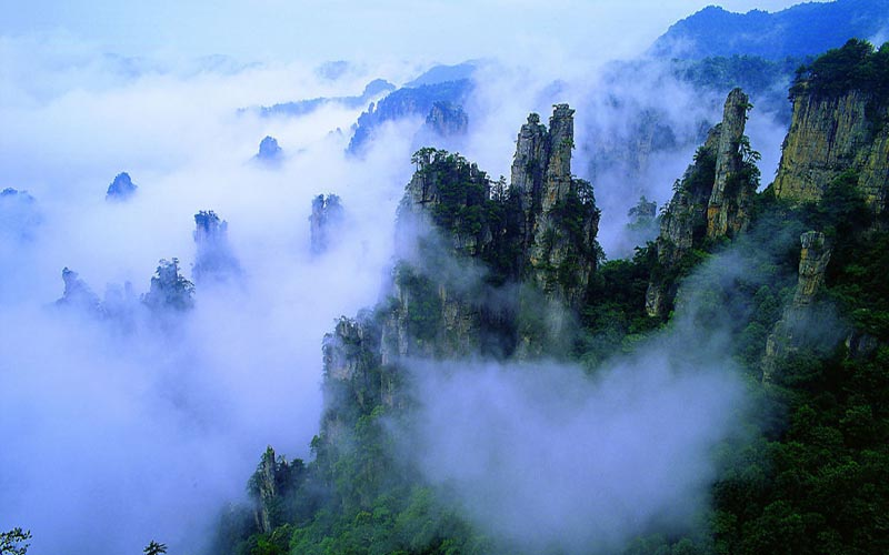 Sea of Clouds in Zhangjiajie Mountains